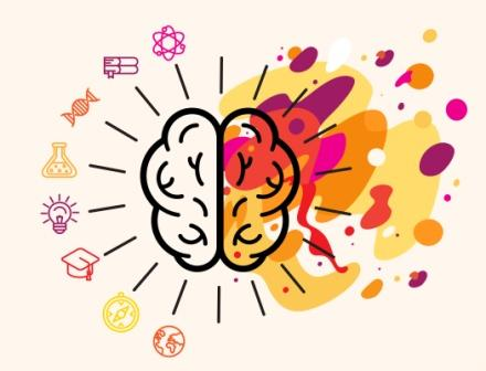 brain power memory concentration