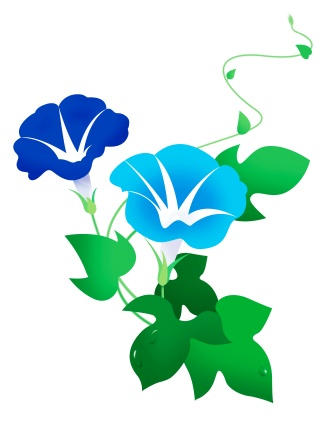 Ipomoea hederacea Kaladana: Uses, Remedies, Research, Side Effects